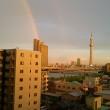 虹とスカイツリー